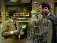 Monty Python - The Dead Parrot Sketch-thumbnail